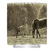 Just Like Mom - Sepia Shower Curtain