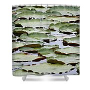 Just Lily Pads Shower Curtain