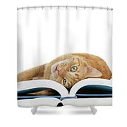 Just One More Story Please? Shower Curtain