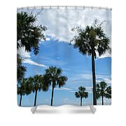 Just Palm Trees Shower Curtain