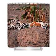 Just Relax Shower Curtain