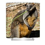 Just Snacking Shower Curtain