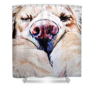 Just Snoozing Shower Curtain