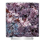 Just Spring Shower Curtain