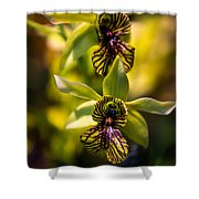 Just Two Of Us Shower Curtain