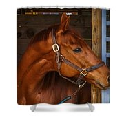 Just Waiting For My Turn To Race Shower Curtain by Robert L Jackson