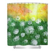Justin's Dandelions Shower Curtain