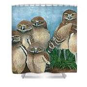 Juven Owls Shower Curtain