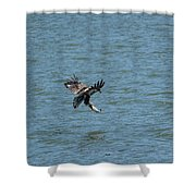Juvenile Eagle Fishing Pickwick Lake Tennessee 031620161318 Shower Curtain