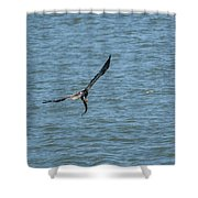 Juvenile Eagle Fishing Pickwick Lake Tennessee 031620161330 Shower Curtain
