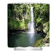 Kaiate Falls Shower Curtain