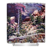 Kaibab Trail Shower Curtain