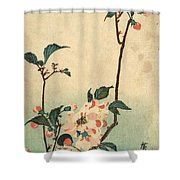 Kaido Ni Shokin II - Small Bird On A Blossoming Branch II Shower Curtain