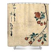 Kaido Ni Shokin - Small Bird On A Branch Of Kaidozakura Shower Curtain