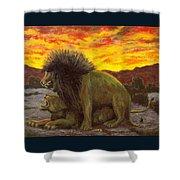 Kalahari Sunset Shower Curtain