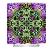 Kaleidoscope 1 Shower Curtain