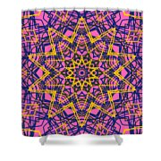 Kaleidoscope 1004 Shower Curtain