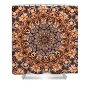 Kaleidoscope 121 Shower Curtain