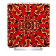 Kaleidoscope 89 Shower Curtain