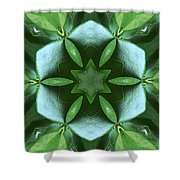 Kaleidoscope My Garden 3 Shower Curtain