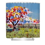 Kaleidoscope Of Colors Shower Curtain
