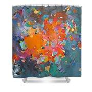Kaleidoscope Of Colour Shower Curtain
