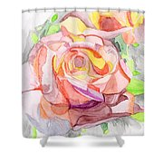 Kaleidoscopic Rose Shower Curtain