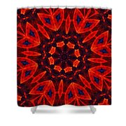 Kalidescope Abstract 031211 Shower Curtain