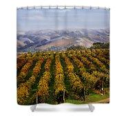 Kalthoff Common Vineyard Shower Curtain