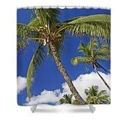 Kamaole Beach Shower Curtain by Ron Dahlquist - Printscapes