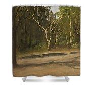 Kanha Forest Trail Shower Curtain