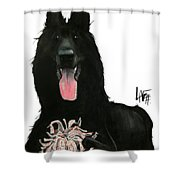 Kasper 3396 Shower Curtain