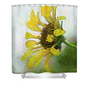 Kate's Sunflower Shower Curtain