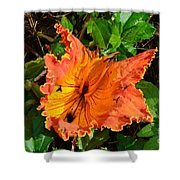 Kauai Hibiscus Shower Curtain