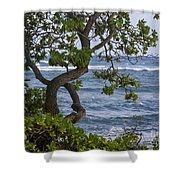 Kauai Shores Shower Curtain