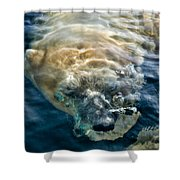 Kavek Shower Curtain
