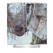Kb Bateman Robert-silent Witness Robert Bateman Shower Curtain