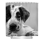 Keep Me Shower Curtain by Amanda Barcon