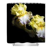 Keep Smiling Iris  Shower Curtain