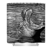 Keeper Of The Swamp - African Hippo Shower Curtain