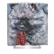Keeshond Puppy With Christmas Stocking Shower Curtain
