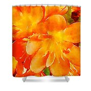 Kaffir Lily Blossoms Shower Curtain
