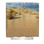 Kelso Dunes Mojave Preserve Portrait Shower Curtain