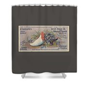 Kennedy And Co. Patent Remedy #2 Shower Curtain