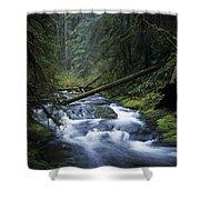 Kentucky Creek Shower Curtain