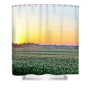 Kentucky Wheat Crop Shower Curtain