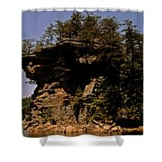 Kentucky Wonder Shower Curtain