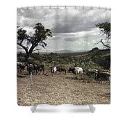 Kenya: Cattle, 1936 Shower Curtain