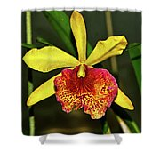 Keowee Newberry Orchid 001 Shower Curtain