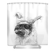 Kerry Shower Curtain